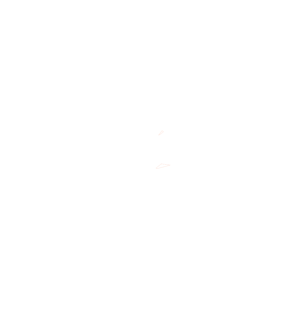 Super T's Mast Cell Foundation